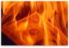burning-money-pic32