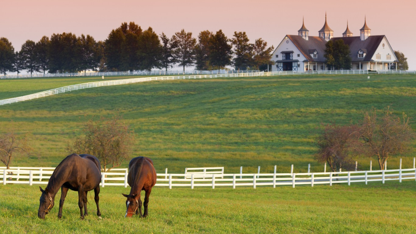 Kentucky (horse farm)