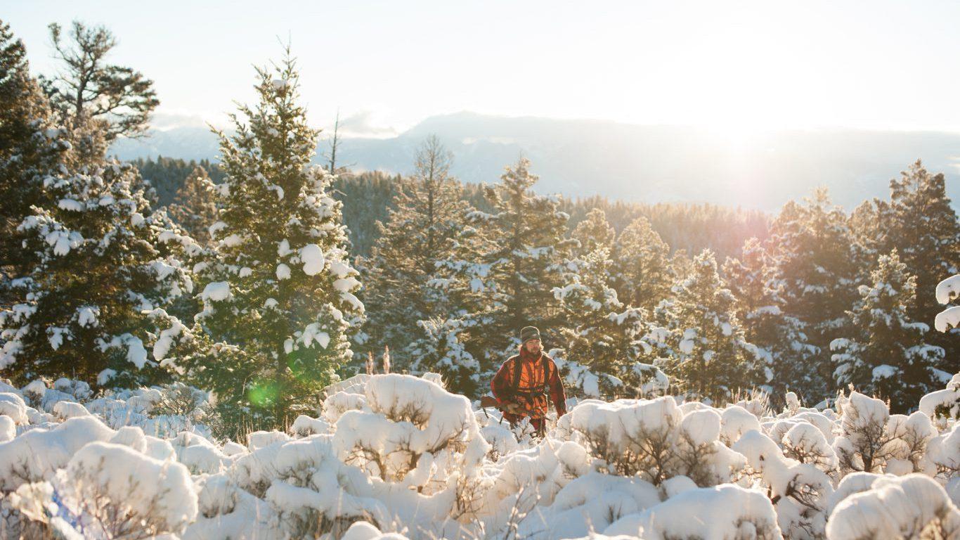 Hunter, Hunting, Montana
