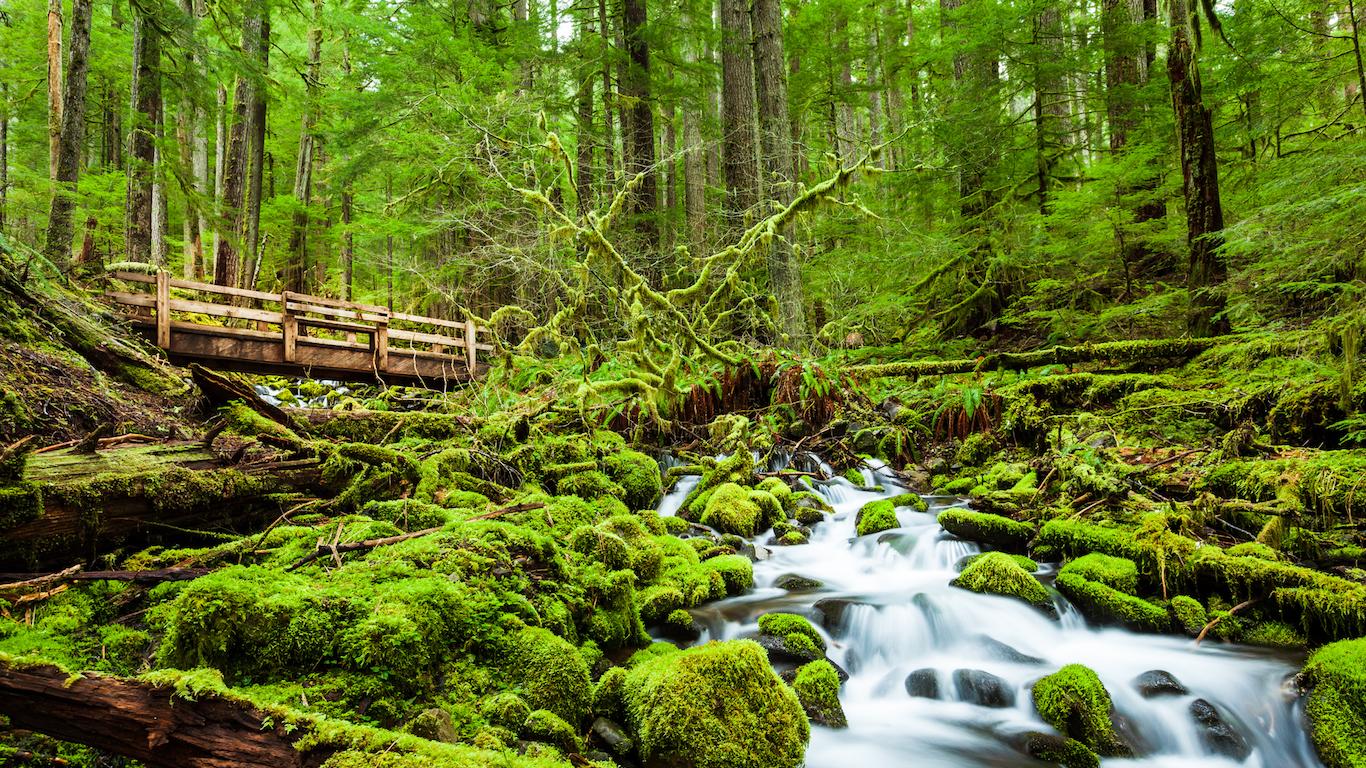 Beautiful cascade waterfall in Sol Duc falls trail, Washington