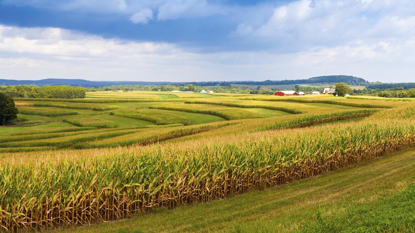 Iowa farmland, corn