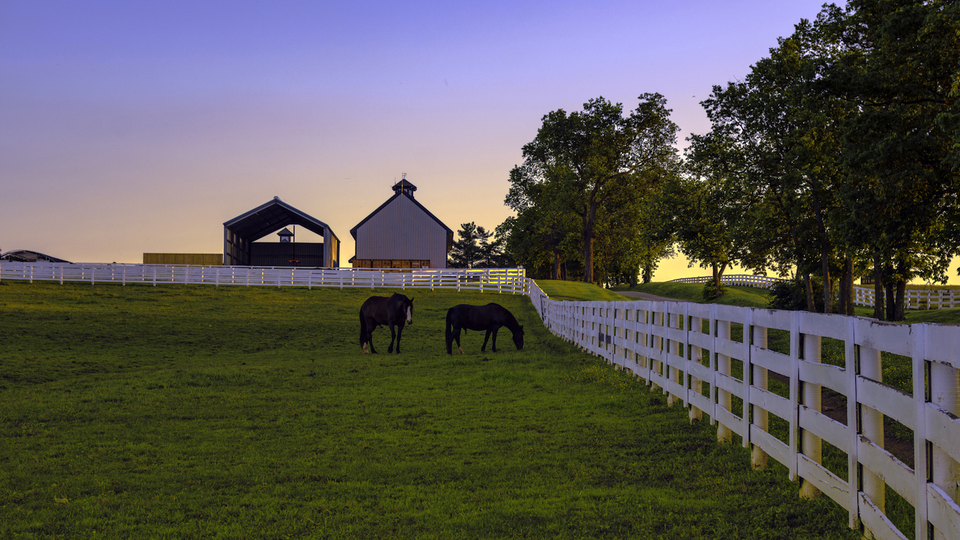 Horse farm at dawn, Kentucky