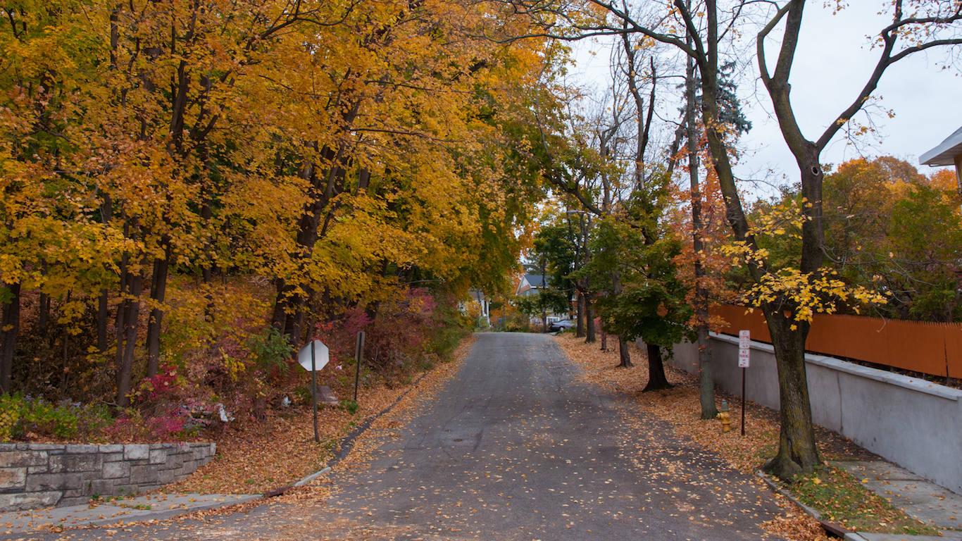 Neighborhood road with fall foliage, Westchester County, New York