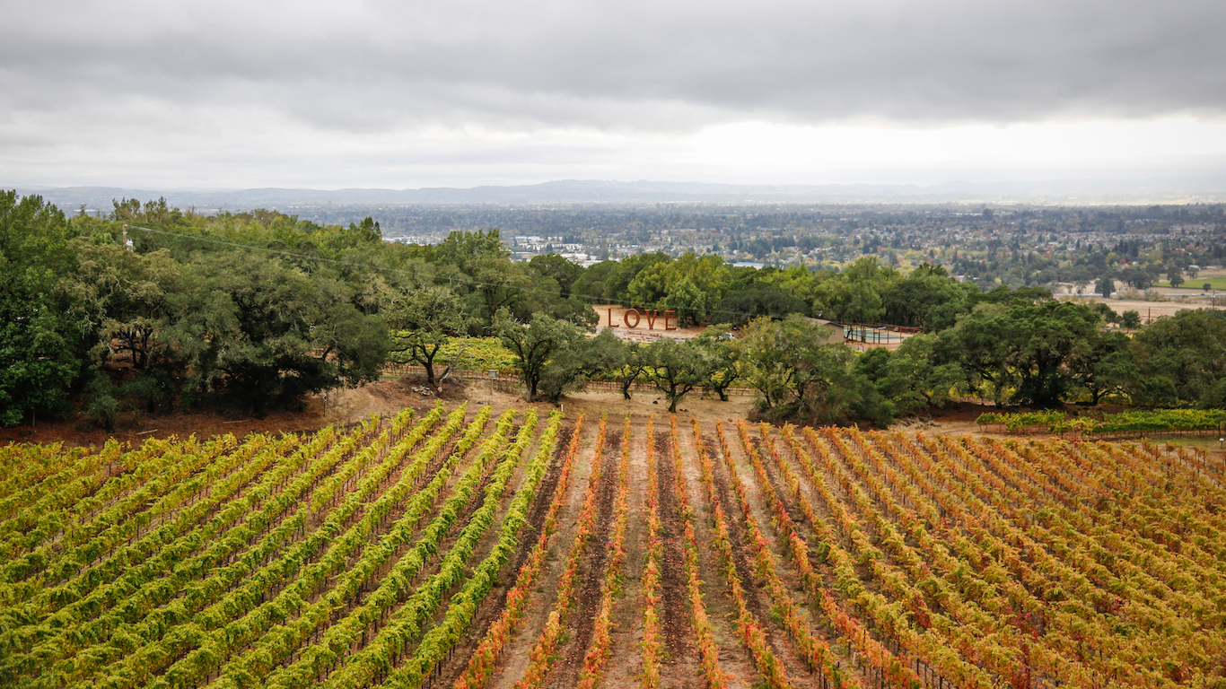 Winery view in Santa Rosa, California in the rain