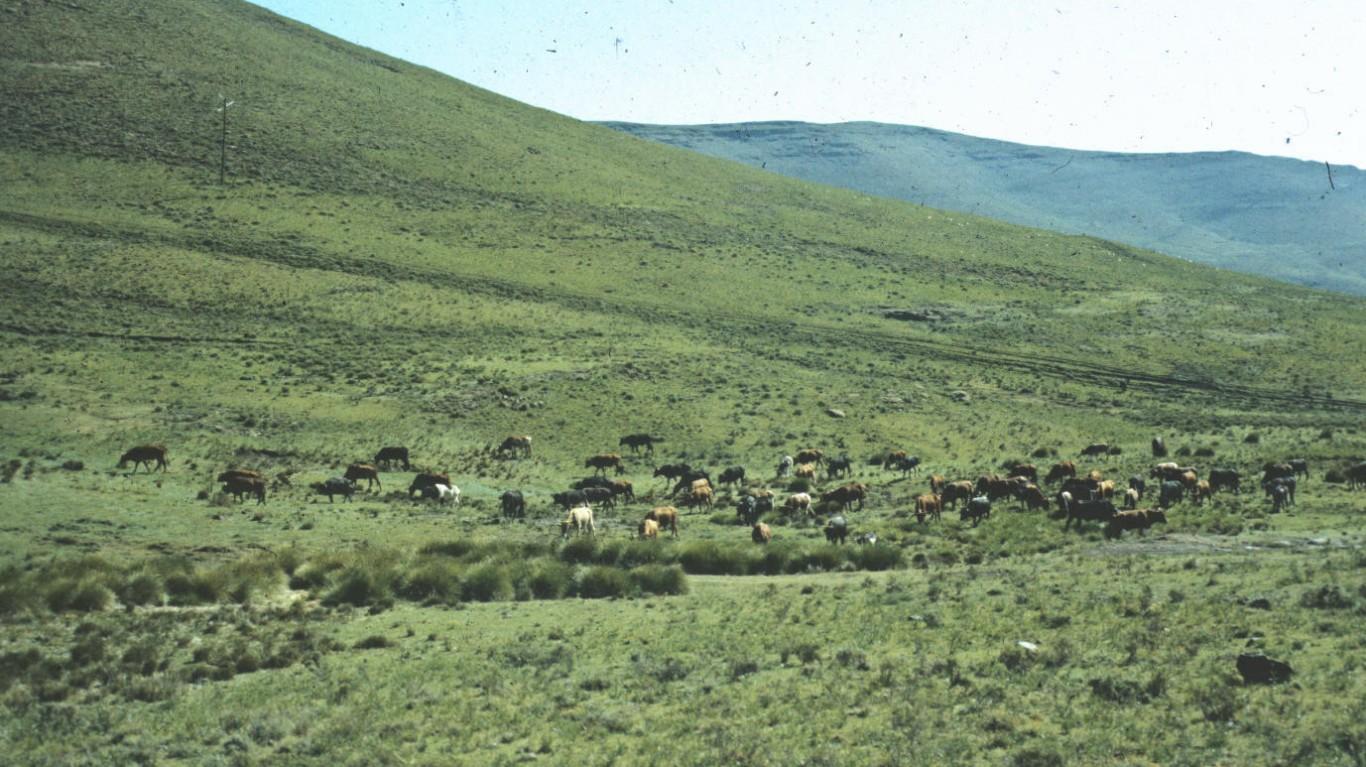 Hillside in Lesotho by Earle Klosterman