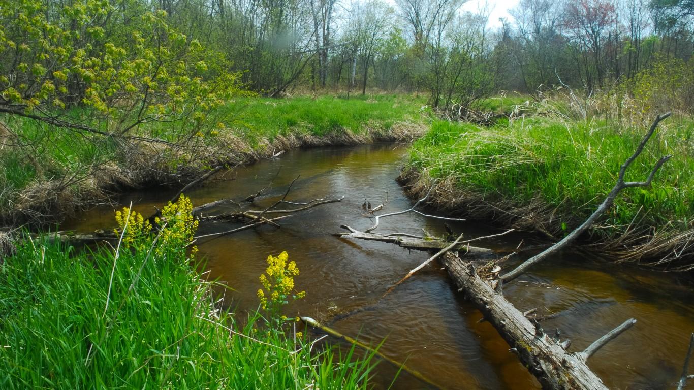 Creek by Joshua Mayer