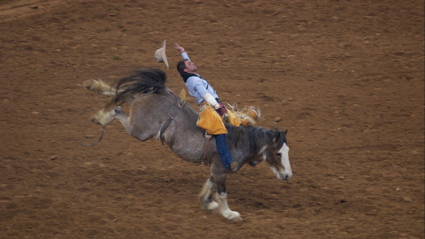 Houston Rodeo and Livestock sh... by Paul Hudson
