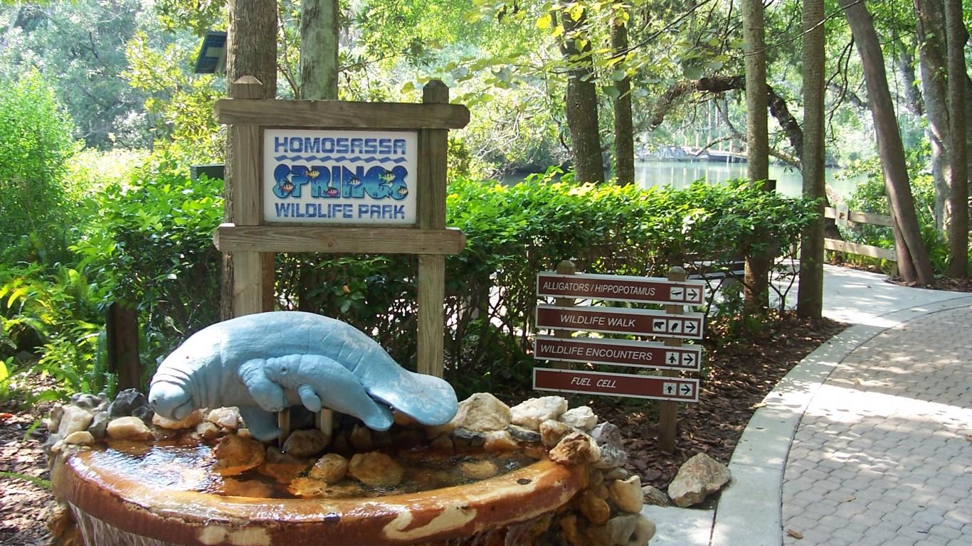 Homosassa Springs Wildlife Sta... by Paul Clark