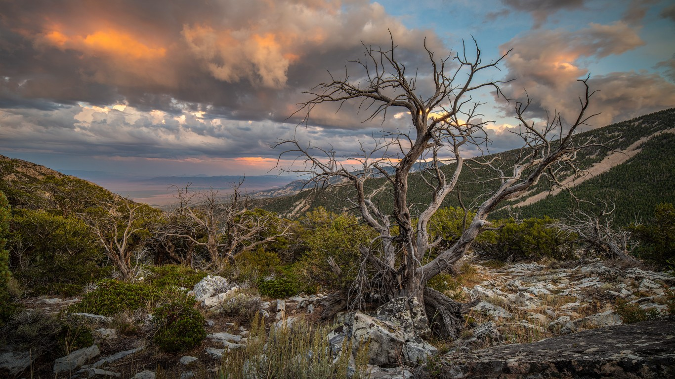 Great Basin National Park by Andrew Kearns